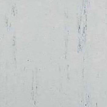 P-1 Pタイル 1箱(50枚) タジマ 【通販サイトMonotaRO】 35628031