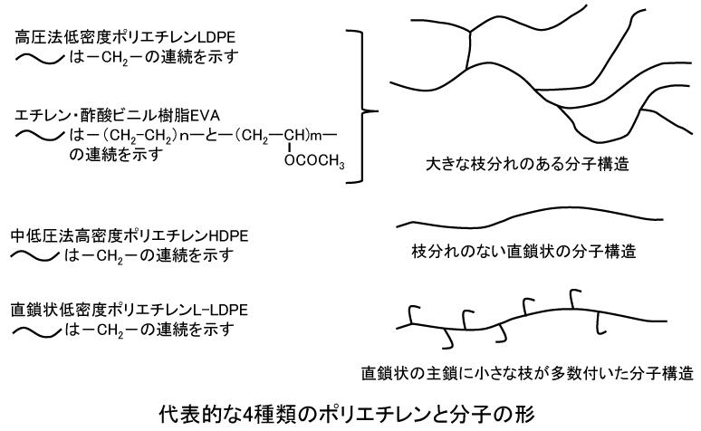 酢酸 ビニル 樹脂